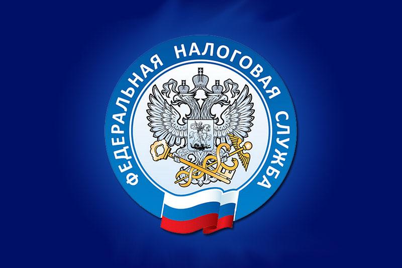 В России идет Декларационная кампания-2019