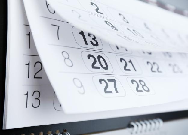 Отчитаться о прослеживаемых товарах нужно до 25 октября
